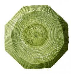 3970251 palo legno recinto elettrico 1