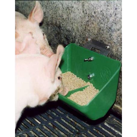 3960135 mangiatoia maiali verde (2)
