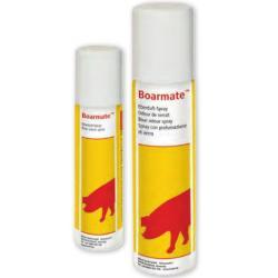 Spray al profumo di verro Boarmate