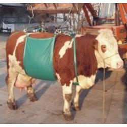 Alzabestiame a fascia per bovini