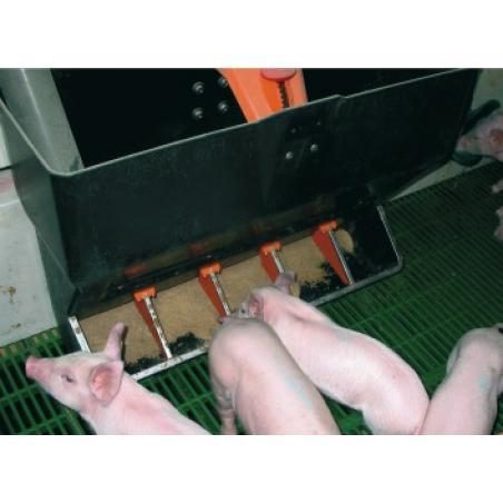 Mangiatoia TR5 con regolazione del cibo per maiali