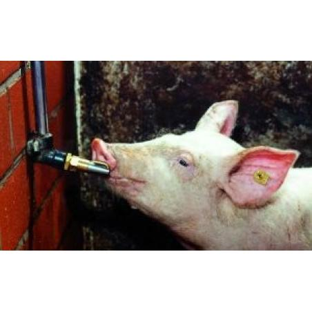 """Abbeveratoio a succhiotto da 1/2"""" per maiali"""