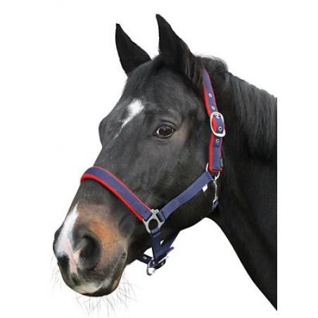 Capezza per cavalli a doppia regolazione