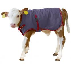 ThermoPlus thermal blanket for calves
