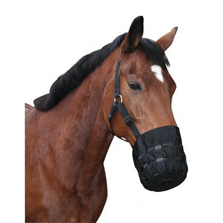 Museruola con capezza per cavalli