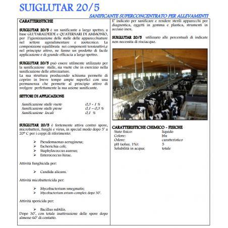 Sanitizzante Sui Glutar 20/5 largo spettro d'azione
