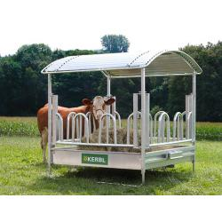 Rectangular bale carrier for horses