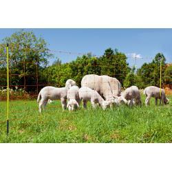 Rete elettrica OviNet Profi per pecore e caprette