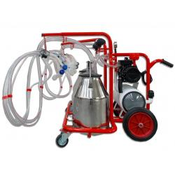 Milking machine for goats, 4 groups with 2 bins