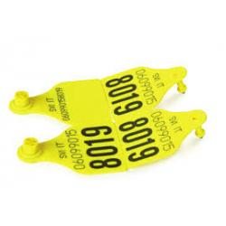 Eat tags Allflex Senior, trapezoidal PRINTED