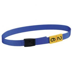Collar with snap buckle for cattle