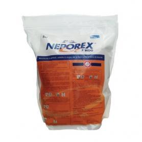 Insetticida Neporex in sacco da 5 kg