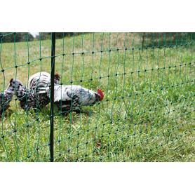 PoultryNet green, electrifiable
