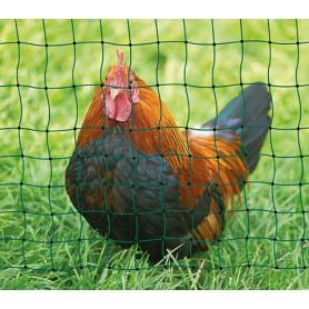 Rete per pollame non elettrificabile
