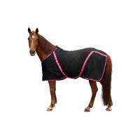 Benessere animale: proteggere i cavalli dal freddo invernale